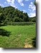 Kentucky Farm Land 96 Acres 96 ac farm/hunting Elliott Co. KY $140,000