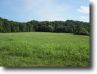 Kentucky Farm Land 180 Acres 179 Aces In Green County, KY
