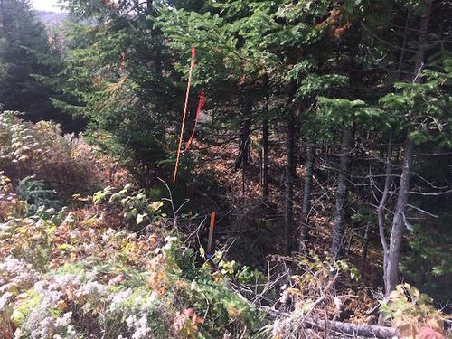 land boundary marker quebec