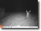 94 acres of hunting land