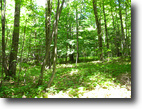 76 Acres Hunting Land Richford NY Finance