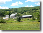 175 Acres Former Dairy Farm near Delhi NY