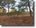 Woodland Acres Subdivision Lot