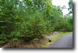 1.74 acres in Cartecay Ridge