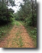 74 Acre Recreational Tract in Oktibbeha Co