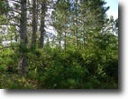 Wisconsin Hunting Land 40 Acres Town of Wascott