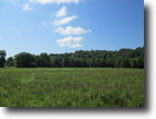 86 Acres In Green County, KY