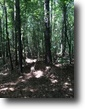 28 Acres For Sale in Lauderdale County