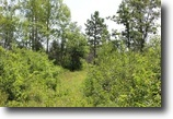 Wisconsin Land 110 Acres Town of Highland