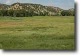 70 acres land near Walsenburg $3k down