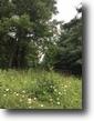 Recreational Property - 103 Acres in Floyd