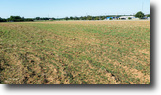 65 Acres MOL For Sale in Garfield County