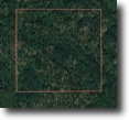 39 acres of unspoiled wilderness land