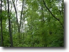 For Sale 2.3 Wooded acres
