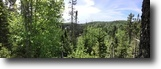 Ontario Hunting Land 160 Acres File 144- One Of a Kind Property $75,000