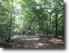 23 Acres In Hart County, Ky