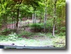 Tennessee Land 2 Acres LAND Wooded lot next to upscale brick home