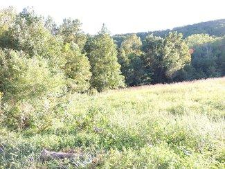 22.5 Acres w/2 Creeks ~ Abundant Wildlife