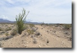 2.5 Acres North of Yucca