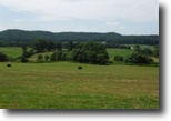 Tennessee Farm Land 98 Acres 97.71 Ac on Hollis Stockton Lane