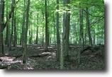 190 acres Timberland near Watertown NY