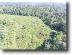 Tennessee Land 81 Acres 81.28 Ac South Fork Rd Lot 6 Whitleyville,