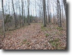 Alabama Land 60 Acres 60 Ac McCormick Ridge Rd Lot 5 RBS, TN