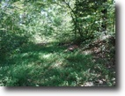 Alabama Land 2 Acres 2.20 Ac Rock Springs Rd Celina, TN 38551