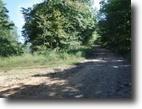 Alabama Hunting Land 2 Acres 2.30 Ac Rock Springs Rd Lot 154-155 Celina