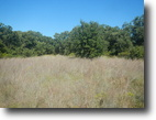 Texas Farm Land 15 Acres 000 Henderson Ranch Road