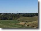 Kentucky Farm Land 110 Acres 110+/-ac Farm Rowan Co.KY $310,000