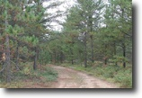 Michigan Hunting Land 39 Acres TBD Co Rd 581, MLS# 1097362