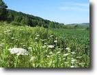 New York Farm Land 125 Acres Gorgeous 125 ac Recreation - Hunting land!