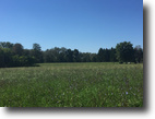 45-ACRE farm prop w/ ranch home and bldgs