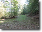 29.4 Acres Wooded Land In Adair County, KY