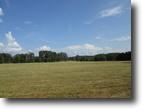 14.1 Acres In Adair County, KY