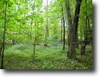 13 acres Catskill State Park Woodstock NY