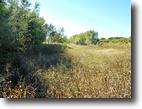 11/7/16 Auction: 160 Acres of Grassland