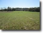 10 Acres In Adair County, KY