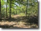 14.3 Acres In Adair County, KY