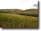 45 acres Hamden NY in Catskill Mountains