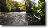 20 acres Smithville NY Creek near Forests