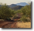 Arizona Farm Land 20 Acres Arizona 20 ac GoldClaim Superstition Mnts.