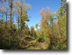 Michigan Hunting Land 20 Acres TBD Power Dam Rd., L'Anse, MLS# 1098203