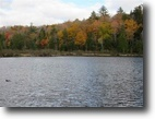 Michigan Waterfront 16 Acres Lot 13 East Fence Lake Dr., MLS# 1098130