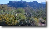 Arizona Farm Land 40 Acres Arizona 40 ac GoldMiningClaim Superstition