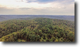 1,068 Acres - Wooded Paradise with Creek