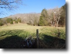 48.99 Acres on Webster Branch Lane