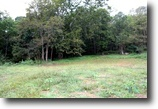 For Sale: 168± Acres of Timberland