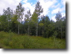 Ontario Hunting Land 47 Acres File 25- A great residential property